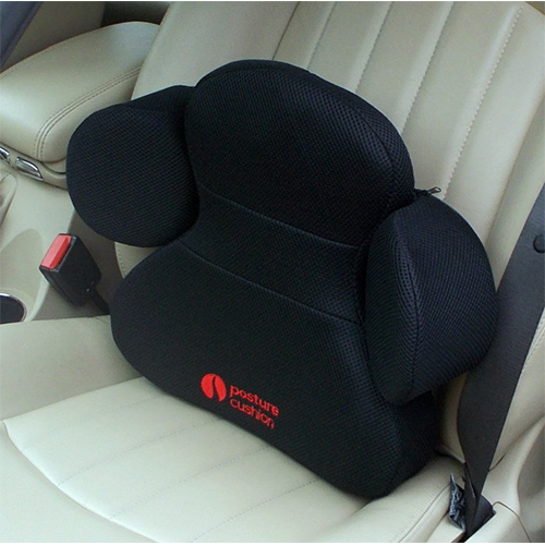Autouseful Posture Cushion Lumbar Support Winged